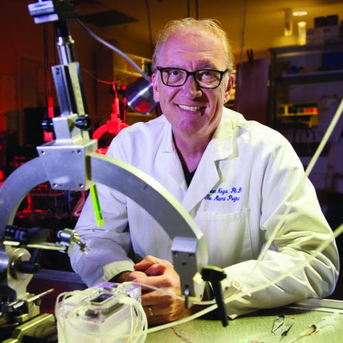 Brian R. Noga, Ph.D.